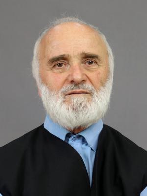 Pr. dr. Făgăraș Sabin